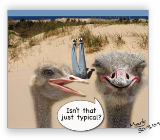 Are You An Ostrich Organization?